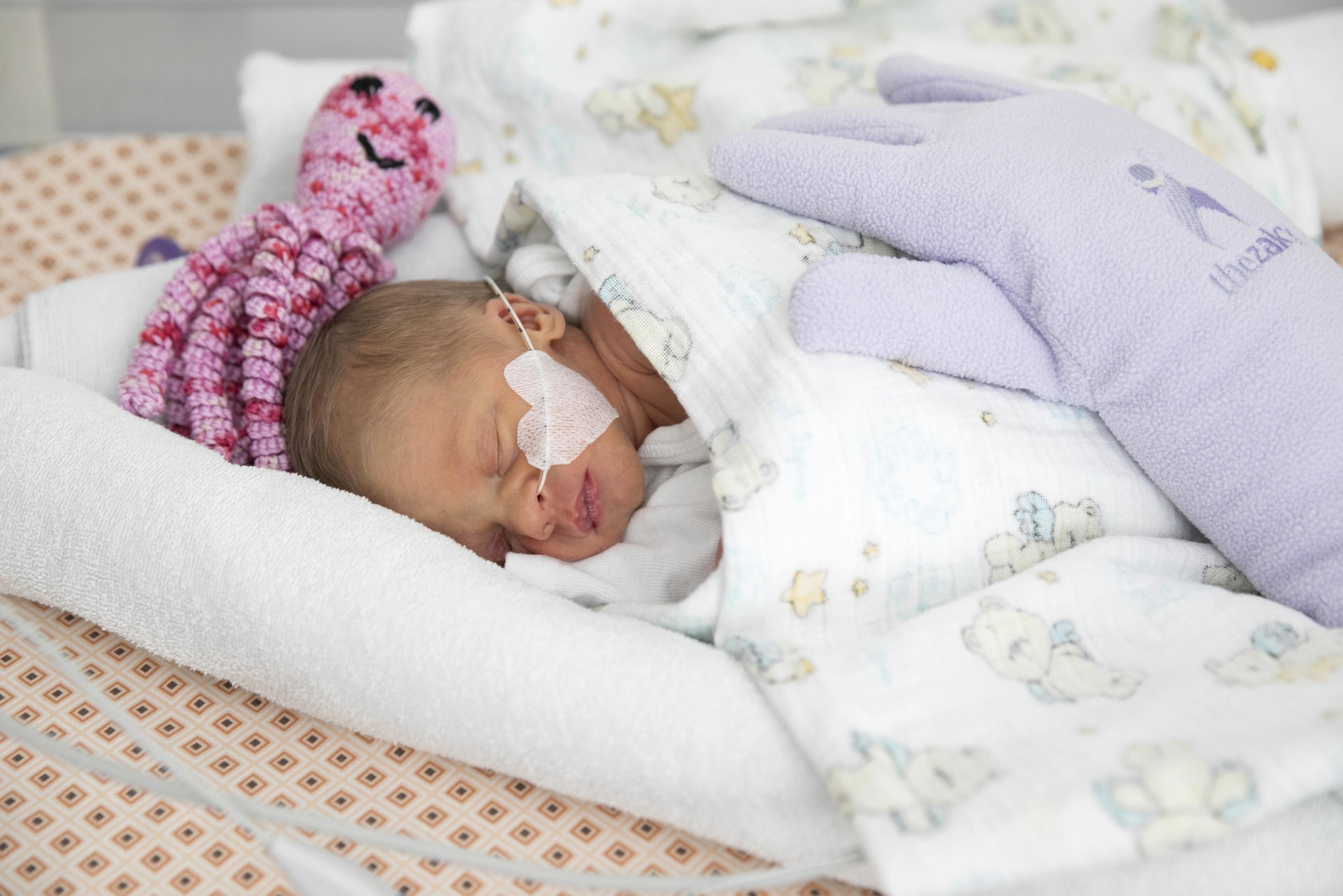 """Ein """"Oktopus für Frühchen"""" und ein """"Zaky"""" sorgen dafür, dass sich die Babys auch im Wärmebettchen sicher und geborgen fühlen. (Fotocredit: St. Josef Krankenhaus / Alek Kawka)"""